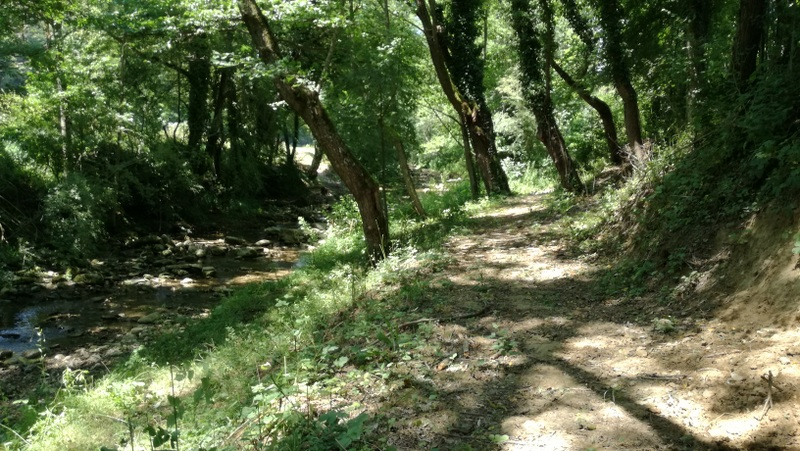 Camí Ral - Ripoll Les Llosses